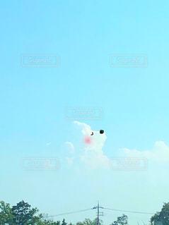 空にうかぶわんこの写真・画像素材[1316731]