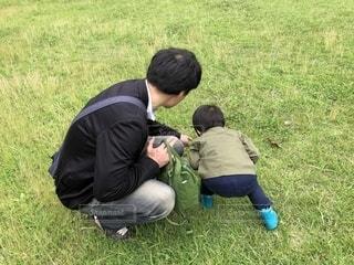 バッタ探ししてるお父さんと男の子の写真・画像素材[1260875]