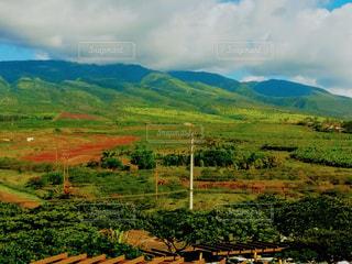 マウイ島の秋の風景の写真・画像素材[1467882]
