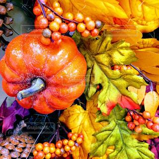 秋色デコレーションの写真・画像素材[1539540]