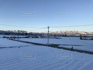 カモメの群れが雪の中に立っています。の写真・画像素材[1735888]