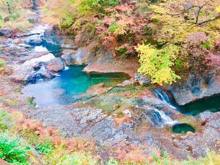 紅葉,群馬,四万温泉,四万の甌穴群