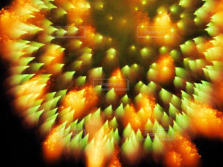 アート花火2の写真・画像素材[1312193]