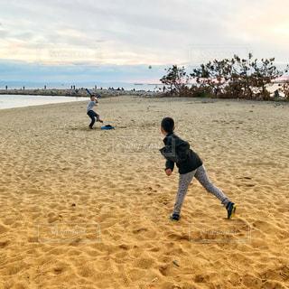 男性,海,砂浜,野球,少年