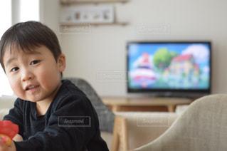 お部屋で遊んでいる男の子の写真・画像素材[1241328]
