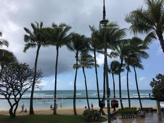 海,空,夏,雨,海外,ビーチ,海岸,ハワイ,梅雨,海外旅行,夕立,インスタ映え
