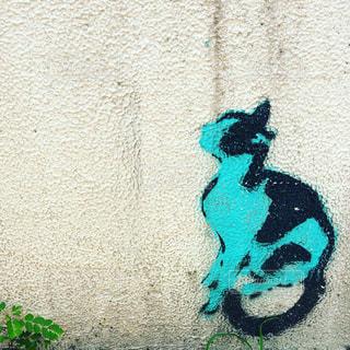 ネコの落書きの写真・画像素材[1267792]