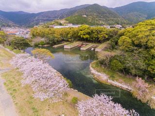 春の長崎県対馬市お舟江を空撮の写真・画像素材[1253802]