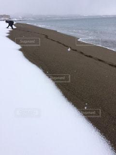 海,冬,雪,白,砂浜