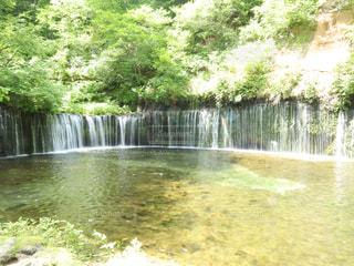 軽井沢 白糸の滝の写真・画像素材[1500572]