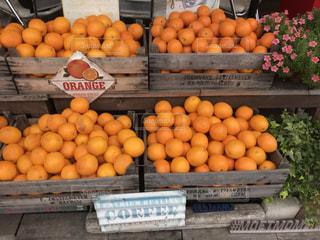 食べ物,屋外,オレンジ,広島,木枠
