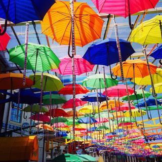 カラフルな傘の写真・画像素材[1252966]