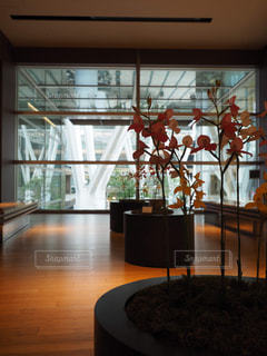 部屋の家具と大きな窓いっぱいの写真・画像素材[1251936]