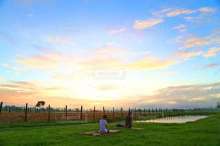 草原,景色,カンボジア,ヨガ,朝ヨガ