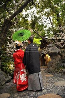 結婚式の写真・画像素材[1255200]