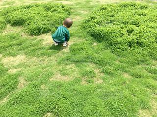 緑の中の緑の子の写真・画像素材[4412712]