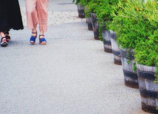通りを歩いている人の写真・画像素材[1258433]