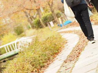2人の歩く道の写真・画像素材[1623554]