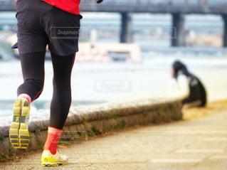 ジョギング朝の時間の写真・画像素材[2543433]