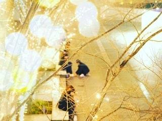 女性,男性,恋人,風景,建物,夜,夜景,カップル,ビル,木,屋外,大阪,綺麗,黄色,幻想的,観光地,アート,景色,女子,男子,光,観光,背景,樹木,イルミネーション,都会,休憩,人物,外,人,キラキラ,広場,コンクリート,地面,明るい,大阪駅,印象的,スナップ,雰囲気,樹,黄,LED,待ち合わせ,金,金色,輝き,室外,大阪市,煌めき,フォトジェニック,チラシ,ちらし,都会の風景,ブログ,グランフロント大阪,インスタ映え,フライヤー,シャンパンゴールド,街スナップ,champagne gold