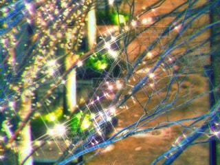風景,夜,夜景,木,屋外,大阪,赤,綺麗,黄色,幻想的,観光地,アート,景色,光,観光,背景,樹木,イルミネーション,都会,休憩,外,キラキラ,広場,コンクリート,地面,明るい,大阪駅,赤色,印象的,スナップ,雰囲気,樹,黄,LED,待ち合わせ,金,金色,輝き,室外,大阪市,煌めき,フォトジェニック,チラシ,ちらし,都会の風景,ブログ,グランフロント大阪,インスタ映え,フライヤー,シャンパンゴールド,街スナップ,champagne gold