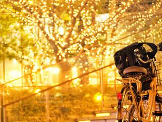 風景,建物,夜,夜景,自転車,ビル,木,屋外,大阪,階段,赤,綺麗,黄色,観光地,アート,景色,光,観光,背景,樹木,バック,イルミネーション,都会,休憩,外,キラキラ,鞄,広場,コンクリート,地面,明るい,大阪駅,赤色,スナップ,樹,黄,LED,待ち合わせ,金,金色,輝き,室外,大阪市,煌めき,フォトジェニック,帰り,チラシ,ちらし,都会の風景,ブログ,グランフロント大阪,インスタ映え,フライヤー,シャンパンゴールド,街スナップ,champagne gold