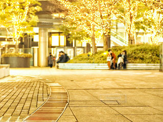 広場のイルミネーションの写真・画像素材[2983857]