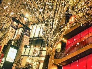 夜景 ホワイトクリスマスイルミネーションの写真・画像素材[4077360]