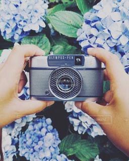 携帯電話を持つ手の写真・画像素材[1312677]