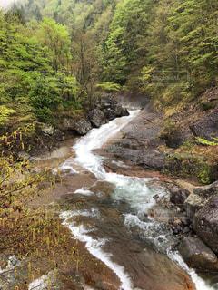 川の側の木と滝の写真・画像素材[1395437]