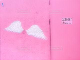 ピンク,アート,壁,pink,天使の羽,フォトジェニック,インスタ映え
