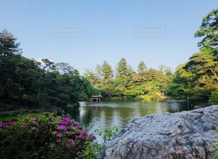 空,緑,千葉,秋空,成田山