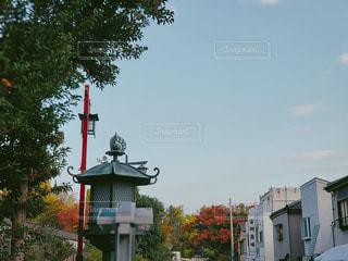 自然,空,秋,紅葉,屋外,景色,樹木,成田山