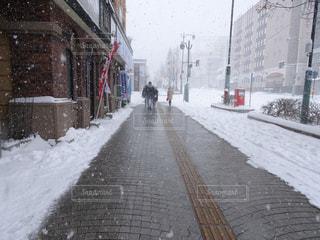 風景,建物,冬,雪,屋外,白,後ろ姿,北海道,都会,道,人,歩道,通り,ホワイト,日中,覆う