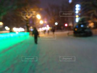 冬,夜,雪,屋外,白,北海道,樹木,都会,寒い,明るい,通り,ホワイト,フォトジェニック