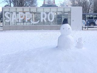 冬,雪,屋外,白,観光地,北海道,観光,旅行,雪だるま,札幌,ホワイト,休暇,吹雪,冷,ブリザード