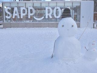 冬,雪,屋外,白,北海道,雪だるま,札幌,ホワイト,吹雪,冷