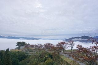 自然,空,紅葉,雲,山,樹木,竹田城,インスタ映え,朝来市