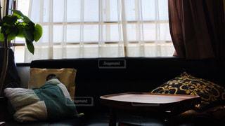 インテリア,屋内,部屋,観葉植物,のんびり,おうち,フォトジェニック