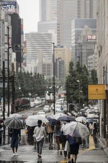 雨,傘,東京,街,都会,新宿,梅雨