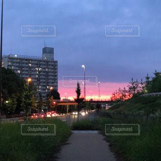 京都,ピンク,夕暮れ,日本,建築
