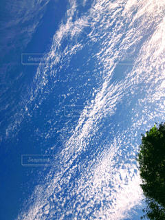 屋外,雲,秋空