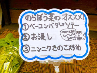 文字,屋外,道端,手書き,農家,レシピ,無人販売,日本語,メッセージカード,のらぼう菜,料理法