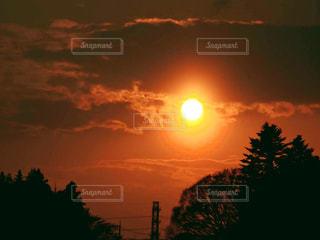 空,春,夕日,屋外,太陽,雲,夕暮れ,光,樹木