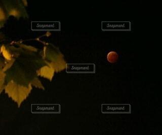 ある皆既月食の日の写真・画像素材[4914998]