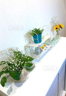お花のある暮らしの写真・画像素材[2005408]