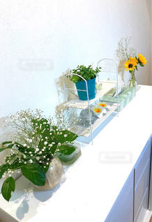 テーブルの上の花の花瓶の写真・画像素材[2140740]