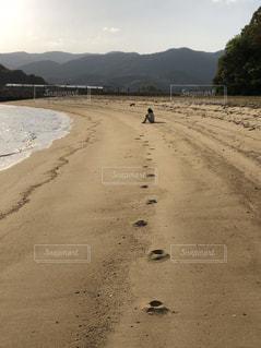 砂浜に座っている女性の写真・画像素材[1262230]