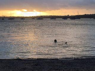 海,夕日,太陽,ビーチ,夕焼け,サンセット
