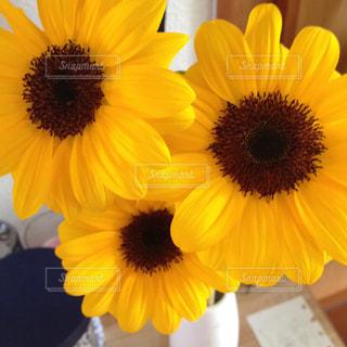 黄色い花の上に座っての花で一杯の花瓶の写真・画像素材[1371524]